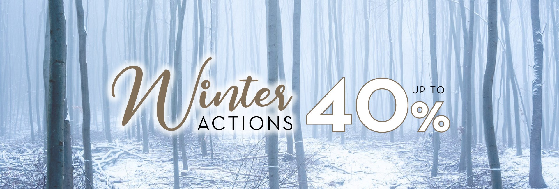 Winter Actions